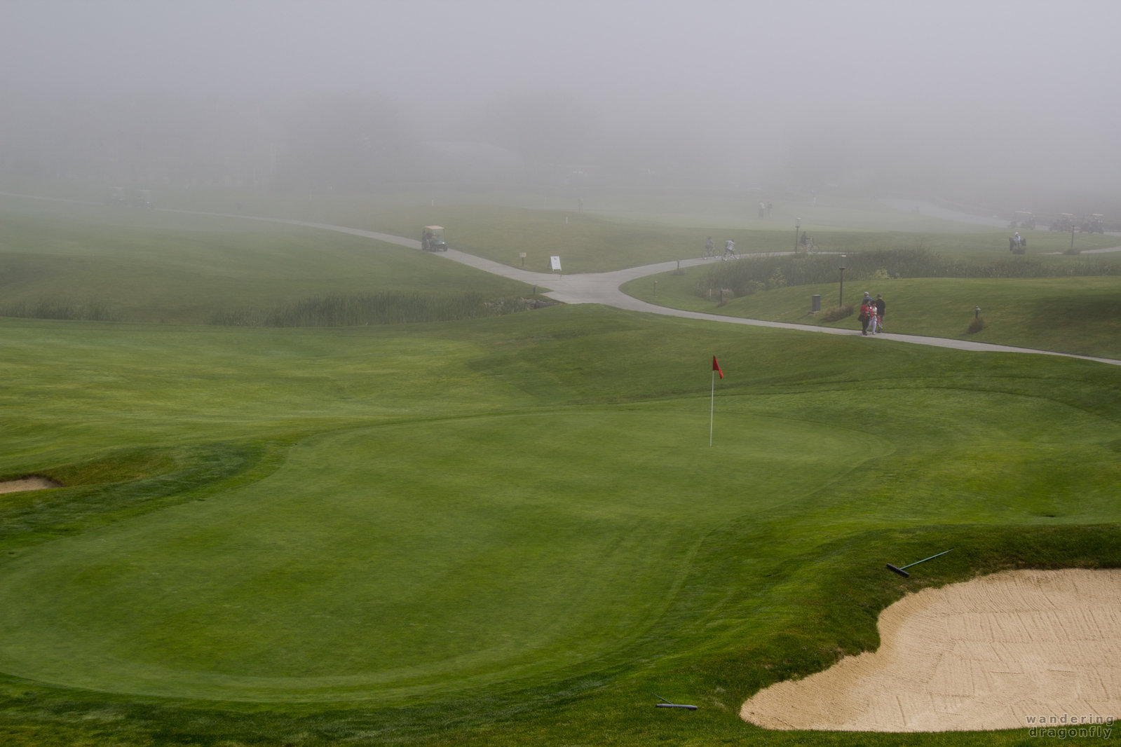 Fog is not a problem for dedicated golfers -- fog, golf course, putting green, sand trap