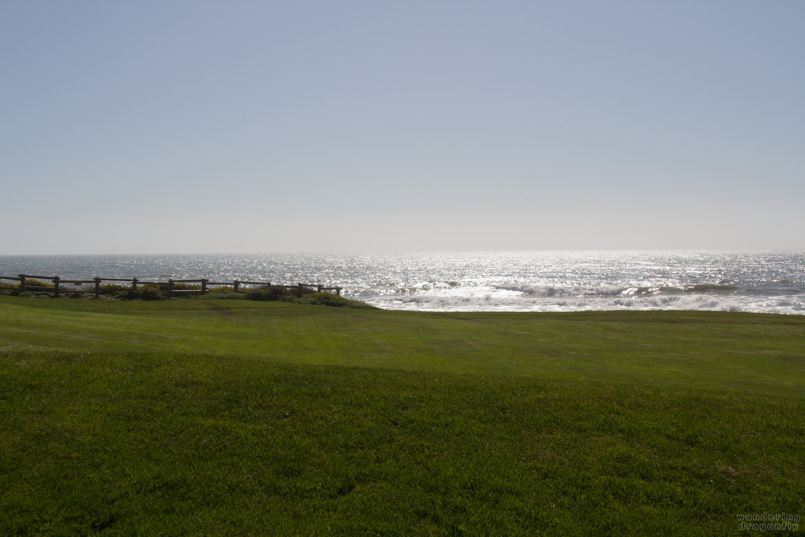 Who wouldn't play golf here? -- grass, green, ocean, sunlight