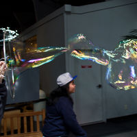 Hands-on exhibits explore biology, physics, listening, cognition, and visual perception in the Exploratorium. You can really touch and try everything.