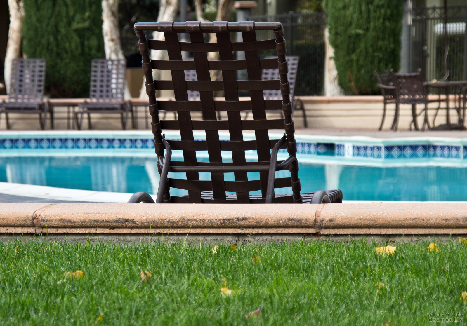 Looking at the pool -- chair, grass, pool