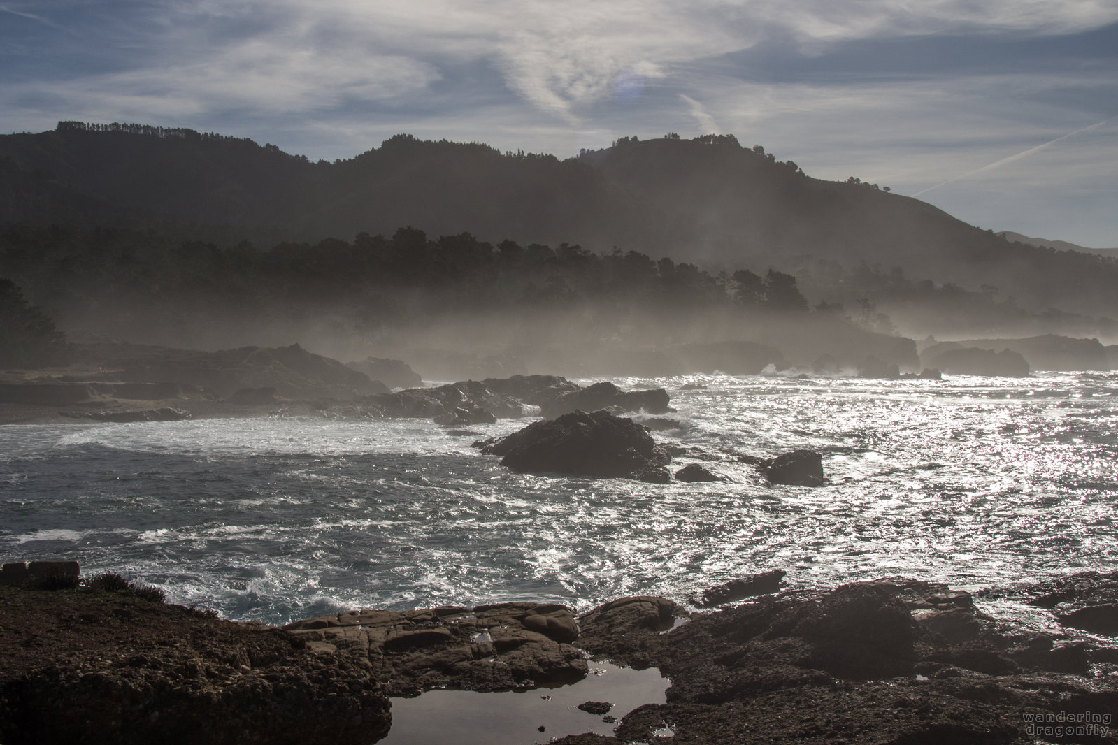 Misty shores -- cliff, cove, fog, forest, ocean, rock, sky, water